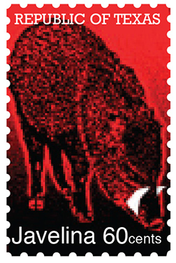 Texas Stamp J