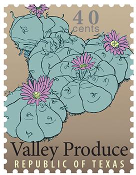 Texas Stamp V